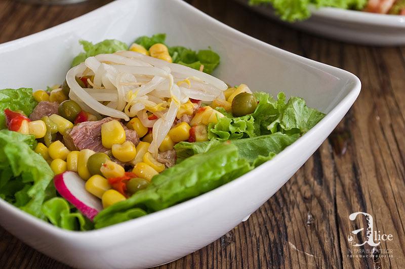 Salata de ton cu muguri de fasole mung