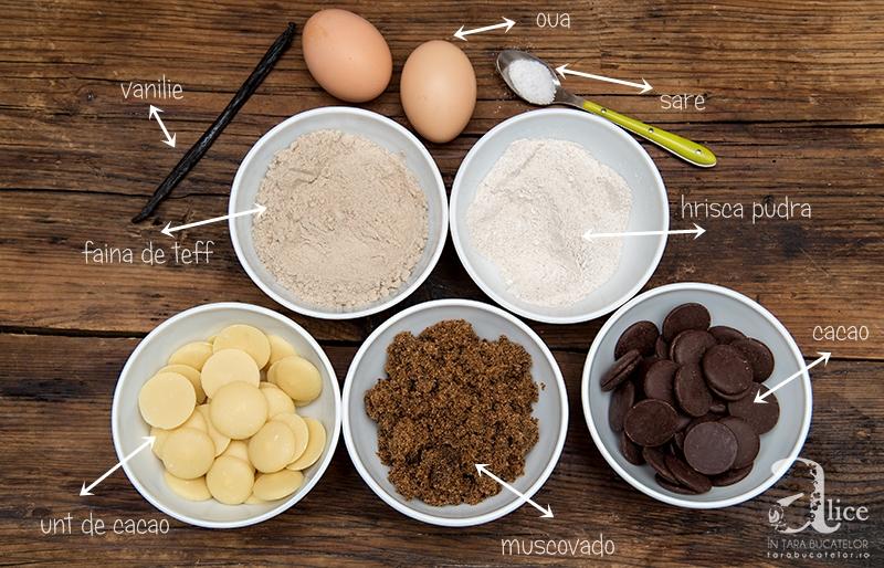 negresa-fara-gluten-cu-unt-de-cacao-13
