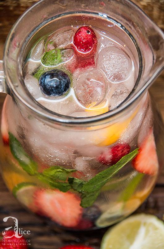 apa-cu-fructe-15
