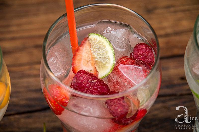 apa-cu-fructe-4
