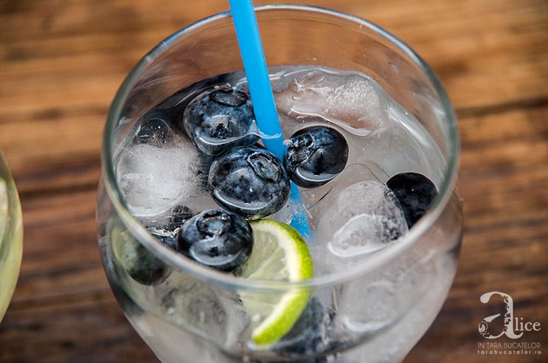 apa-cu-fructe-5