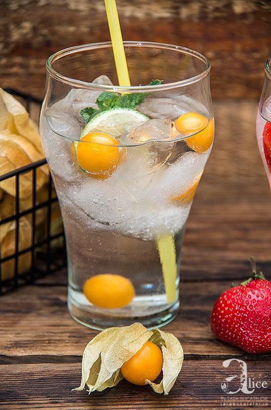 apa-cu-fructe-7