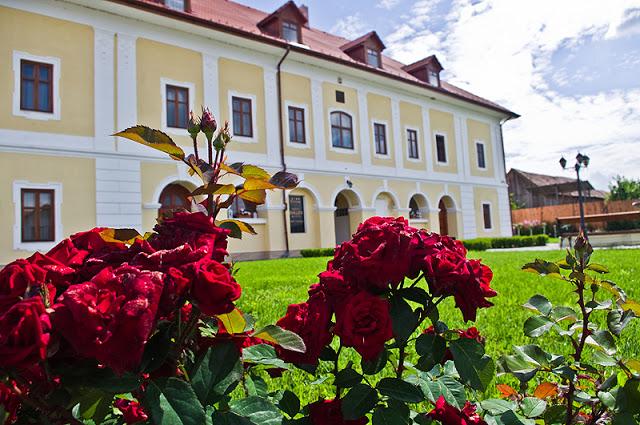 O vizita la Castelul Haller